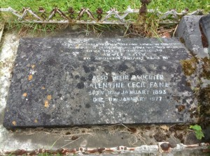 vf grave picture from sheila johnson2